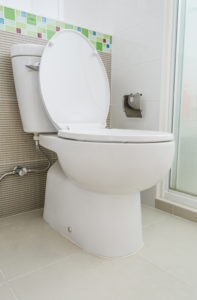 elongates toilet - plumbing services